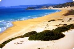 golden_beach